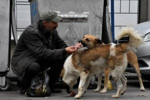 Sokak hayvanları sevgisi hayata bağladı