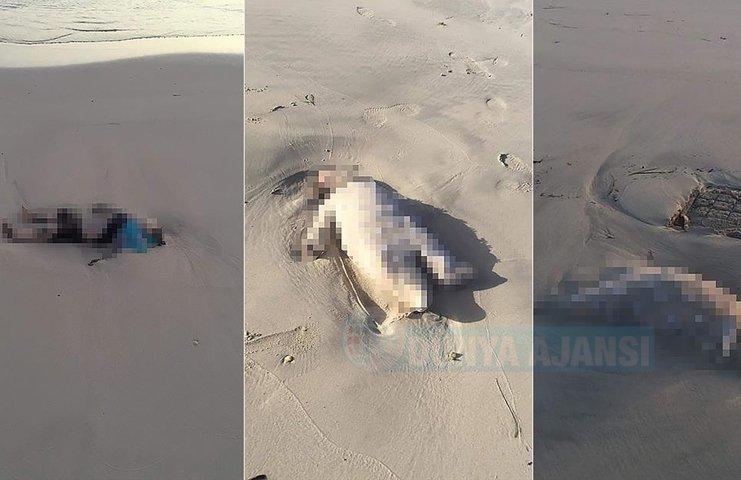 Akdeniz'de boğulan 3 göçmen çocuğun cansız bedeni Libya kıyılarına vurdu