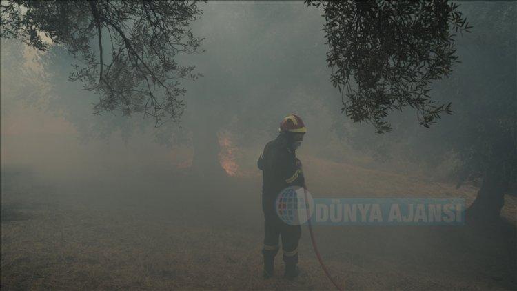Yunanistan'da yüz binlerce dönümlük ormanı küle çeviren yangınlar devam ediyor